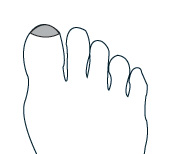 Chinese Reflexology Sinus Point