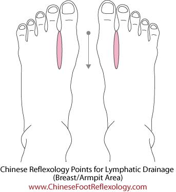 Chinese reflexology lymphatic system, breast reflexology
