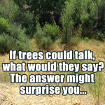 TalkingTrees