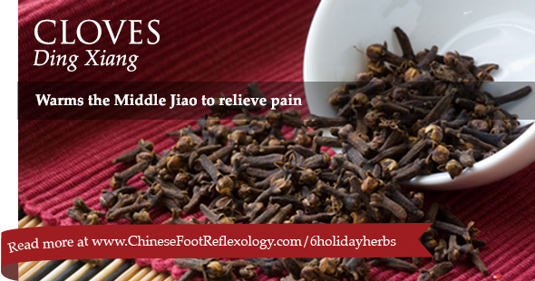 Chinese herb Ding Xiang therapeutic uses
