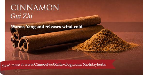 Chinese herb cinnamon gui zhi