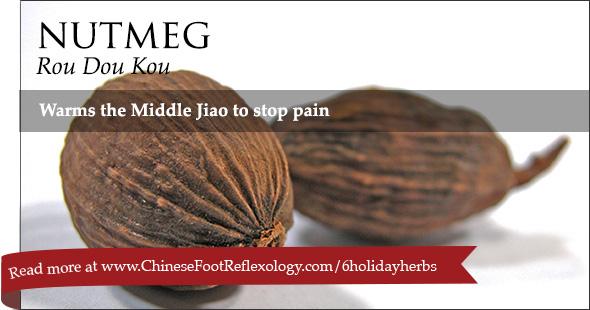 nutmeg Rou Dou Kou Chinese herbs