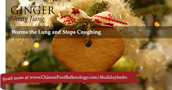 Sheng Jiang Chinese herb ginger