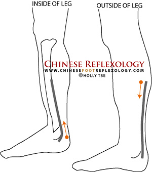 reflexology points for sciatica pain relief, sciatic nerve