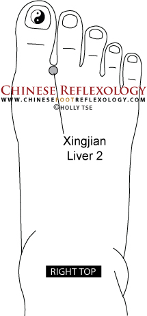 Liver2Copyright-HTse