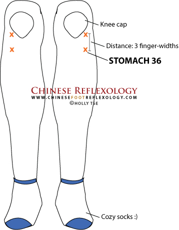 Stomach 36 acupuncture point, zusanli acupressure point, zu san li