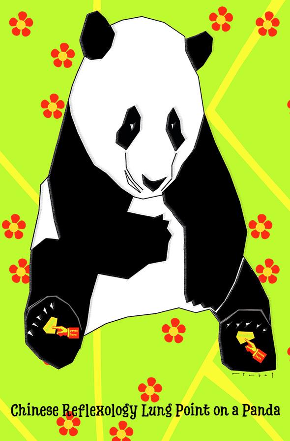 2017-12-panda-1