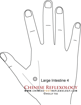 Hegu Large Intestine 4 acupressure point