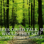 If Trees Could Talk, What Would They Say? The Answer Might Surprise You